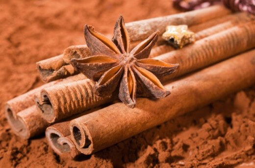 Cinnamon bundled, with anise star on a brown cocoa background